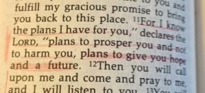 Underlined in Aunt Marge's Bible